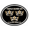 Triple Crown 100 - 2013 Stallion Service Auction