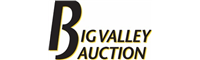 Big Valley Auction