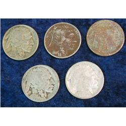 734. (5) Buffalo Nickels ranging in date 1914-25.