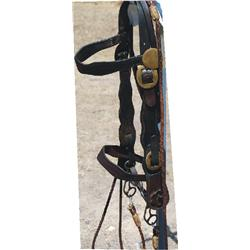 Early iron wide bridle