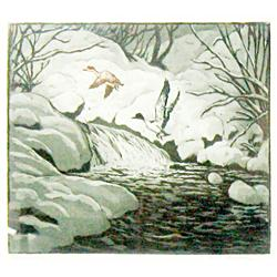 "Kleiber, Hans (1887-1967), Mergansers, hand-colored aquatint (colored etching), 7 3/8"" x 9 3/8""."