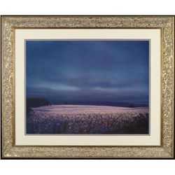 Flower Fields Art Photo Photograph Framed