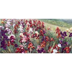 Marysia Burr RED IRISES Deluxe Canvas Floral Art Print