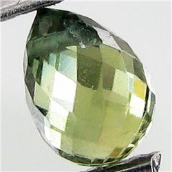 0.79ct Green Tourmaline Briolette (GEM-40597)