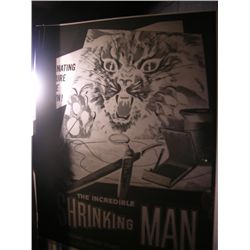 The Incredible Shrinking Man  Negative