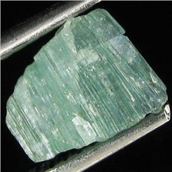 1.7ct Afghan Tourmaline Crystal (GEM-35355)