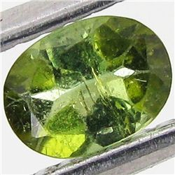 0.41ct Chrome Green Tourmaline Oval (GEM-40708)