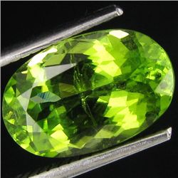 4.72ct Sparkling Green Natural Pakistan Peridot (GEM-25966)