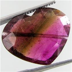 9.81ct Watermelon Tourmaline Heart (GEM-27093)