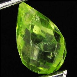 1.11ct Green Peridot Briolette (GEM-40654)