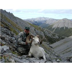 10-day Dall or Fannin sheep hunt for one hunter in Ogilvie Mountains, Yukon