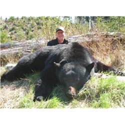 5-day Vancouver Island black bear hunt for one hunter - includes trophy fees