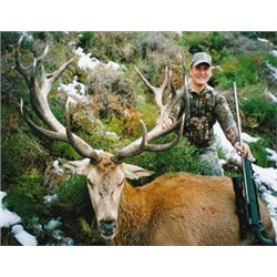 5-day free range red stag and bull tahr rifle hunt for two hunters - includes trophy fees