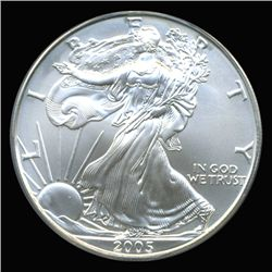 2005 Silver Eagle Graded GEM MS70 (COI-6269)
