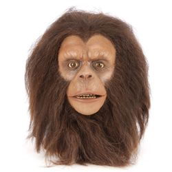 Planet of the Apes Zira head