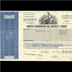 1990s North European Oil Stock Certificate Scarce (COI-3423)