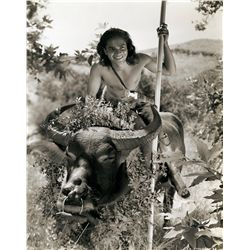 Jungle Epic  50+ original still photos from The Jungle Book 1942 & Trader Horn 1931