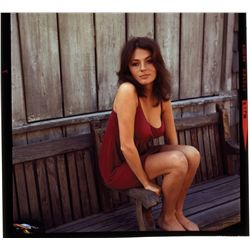 Jacqueline Bisset color transparencies, including early glamour shots
