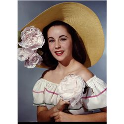 Elizabeth Taylor color transparencies from her earlier years