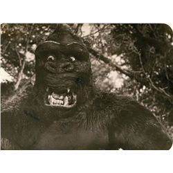 Willis O'Brien's  Key-Continuity photo collection (125+) from King Kong