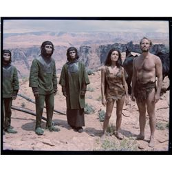 Collection of color transparencies from Planet of the Apes