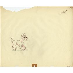 Tramp drawing from Lady and the Tramp