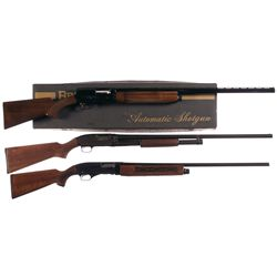 Three Shotguns -A) Belgian Browning Auto 5 Light 12 Semi Automatic Shotgun with Box