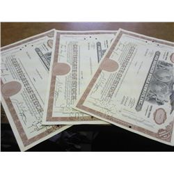 3-PAN AMERICAN WORLD AIRWAYS STOCK CERTIFICATES