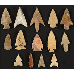 Collection of 14 Small Arrowheads