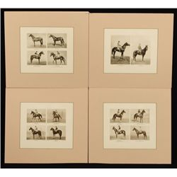 4 Vintage Horse Racing Photo Prints
