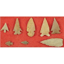 Collection of 8 Small  Arrowheads