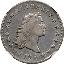 1795 Flowing Hair $1. 3 Leaves NGC EF40