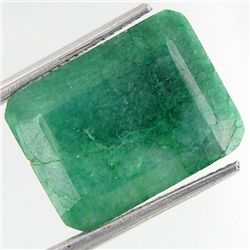16.78ct South American Emerald Octagon Cut (GEM-36704)