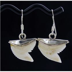 Sterling Shark Ivory Earrings (JEW-1957)