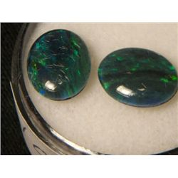 BLACK OPAL