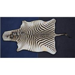 Large Zebra skin rug approx. 5 feet by 8 feet  in overall very good condition showing some  wear and