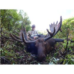 *British Columbia – 10 Day – Early Season Moose Hunt for One Hunter