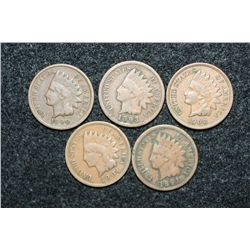 Indian Head penny, various dates & conditions, lot of 5