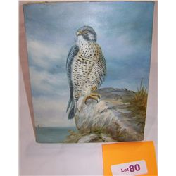 Oil on Canvas Painting of a HAWK Signed Sandy,  canvas framed over stretchers 8T x10W