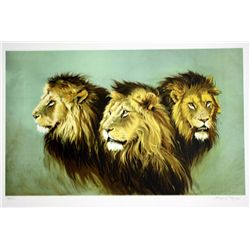 Sydney Taylor Hand Signed and Numbered Lithograph - Lion Portrait