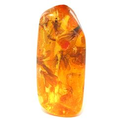 200ct Natural Peru Amber Polished Cab w/Insects! (MIN-000963)