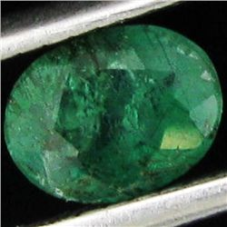 0.5ct Intense Green Zambian Emerald Oval (GEM-21431A)
