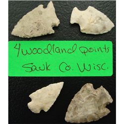 4 Woodland Points Sauk Co. Wisc.