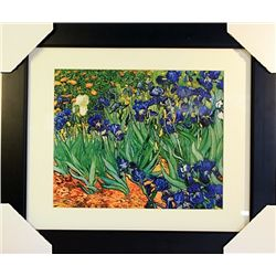 Vincent Van Gogh  Limited Edition-IRISES