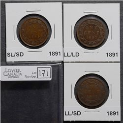 Cent 1891 LD/LL VG-10, SD/LL F-12, SD/SL F-12, all coins Obverse 2. Lot of 3 coins
