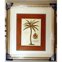 Coconut Palm  by Ehret