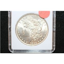 1882 Silver Morgan $1, MCPCG Graded MS61