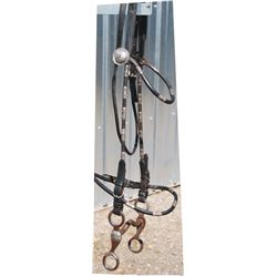 bridle with silver headstall and Crockett overlaid bit