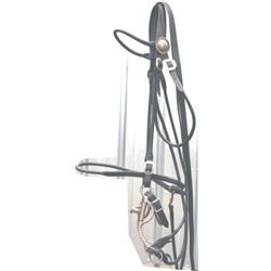 silver bridle with Fleming silver bit