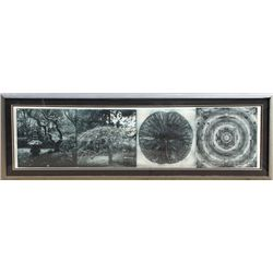 Judy Pfaff, When the Moon is Full, Photo Etching